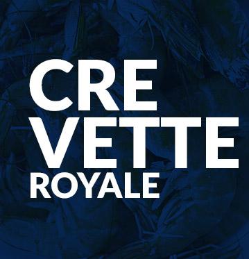 Crevette royale